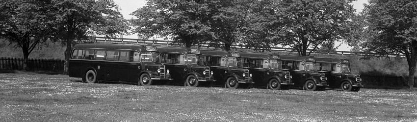 JWC Lined Up In Palmer Park April 1946